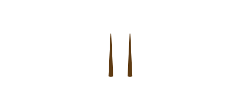 Tell a modest of Japan since ancient times. -  chop sticks